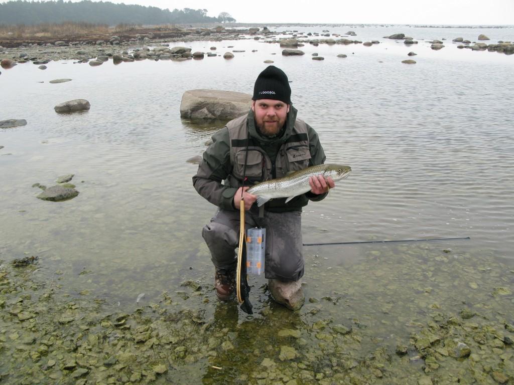 Havsöring 63cm 2,26kg